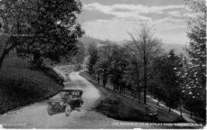 historicmckinleyparkoldcardrivingbwpces_m